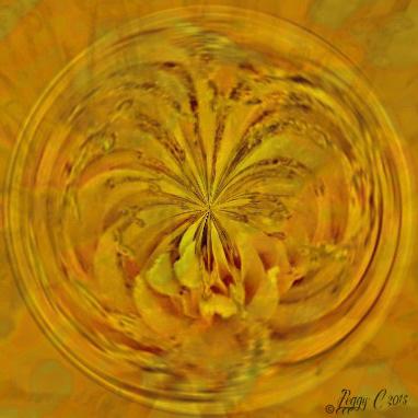 'Liquid Sunshine '