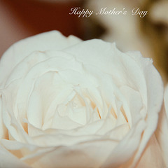 To All Mums with Love