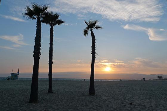 USA - California, Los Angeles / Venice