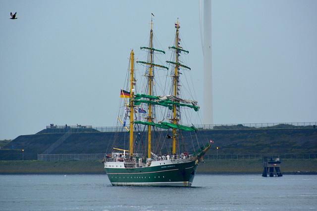 Sail 2015 – Alexander von Humboldt II