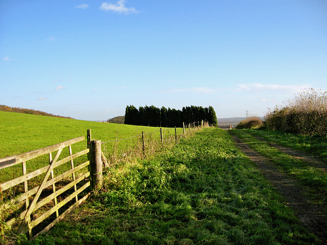 Looking eastward along the Heart of England Way towards White Owl Farm