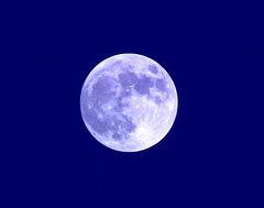 lune bleue / blue moon