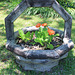 A really neat homemade planter !!  :)