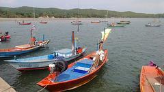 Le coin des pêcheurs / Fishermen area