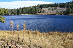 Richardson Lake