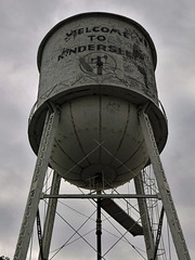 Kindersley's stiff neck eyesight / Torticolis des Prairies