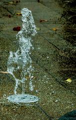Autumnal Splash
