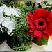 Pentecost Flowers... ©UdoSm