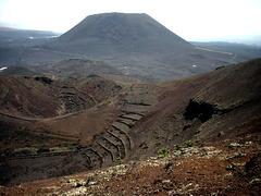 Vulkankrater-Gärten im Norden Lanzarotes
