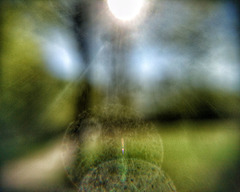Summer morning in Myopia