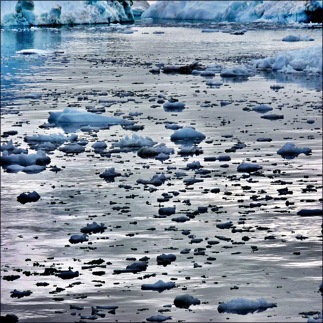 Ilulissat (206)