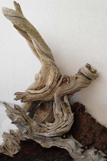 Cistus ladanifer roots, Pareidolia