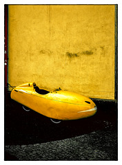Yellow Rocket