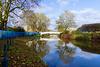 Swollen River Sow