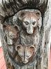 Bären mit Kopfweh