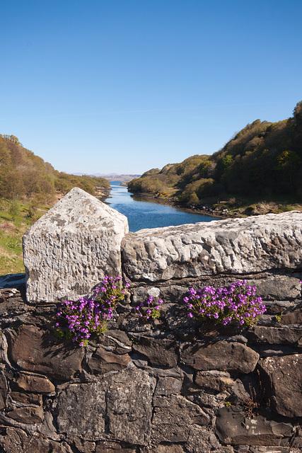Looking north on the Clachan Bridge