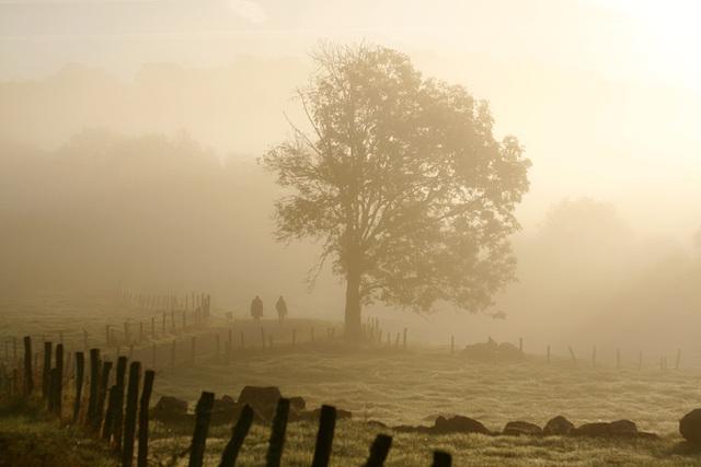 Cheminant dans la brume.