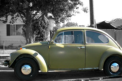 Old Bug without its tail