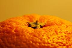 Macro Mondays - Orange