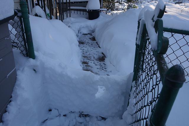 Snowgate!