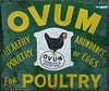 Beamish- 'Ovum For Poultry'