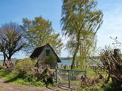 Frühling kommt unaufhaltsam auch in die kleinste Hütte - HFF!
