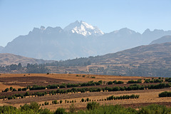 Farming in the Sacred Valley