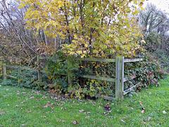 Corner fenced for HFF