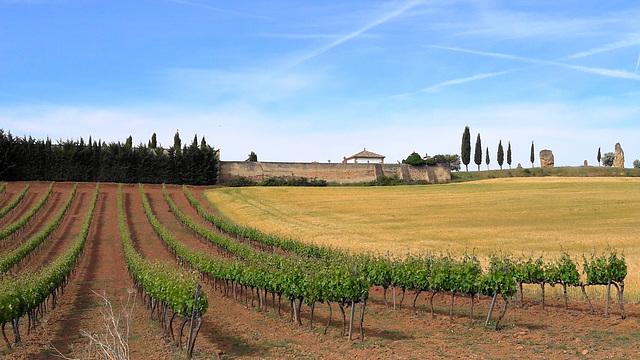 Estella (Espagne)
