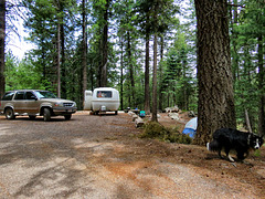 Riggs Flat Campground