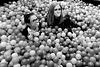 Reims - bulles et boules