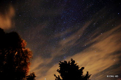 Stars shining brightly in north-eastern skies this evening