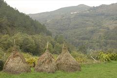 Parque Nacional da Peneda-Gerês,  Culturas e medas