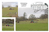 Maintaining healthy pasture at Stanmer Park - 1.4.2016