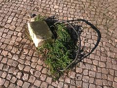 Sidewalk trap