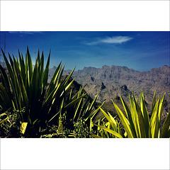 Rough mountainscape.