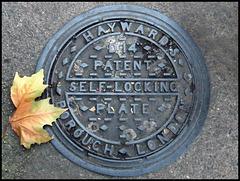 Hayward patent self-locking