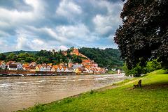 Hirschhorn am Neckar - HBM (315°)