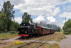 Vorbeifahrt am Bahnhof Jenny (PiP)