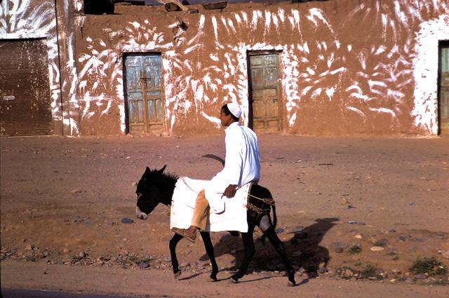 Sud marocain (MA) Avril 1979. (Diapositive numérisée).