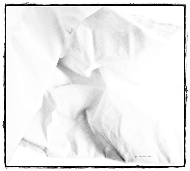 Papiertuch