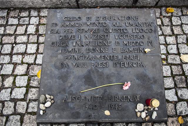 Auschwitz Birkenau-10