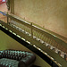 Hotel Cecil Lobby (3080)