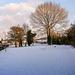 Bettws Snow 19
