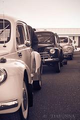 Renault 4CVs