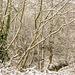Bettws Snow 22