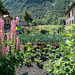 Garten im alten Dorf Bonneval-sur Arc (1800 müM)