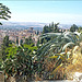 Granada Sacromonte