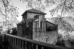 Zaungast auf Burg Wolfsthurn (PiPs)