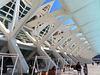 Valencia: Museo de las Ciencias Príncipe Felipe, 15